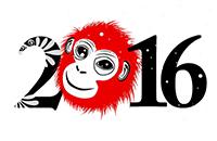 Новый 2016 год с SilverStone f1